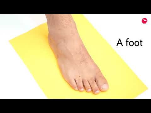 How to measure your foot for ordering shoes online